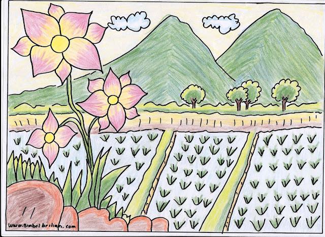 3. Gambar Berwarna Bunga, Sawah dan Pegunungan