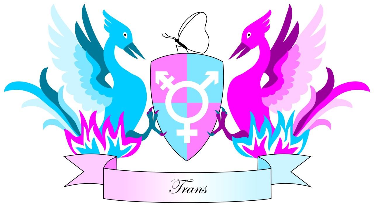 RSS Feed «Trans donna incontri transman.