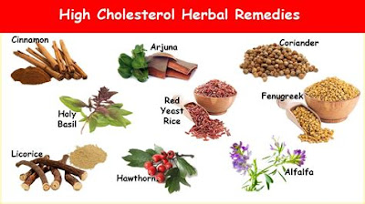 Natural Herbs for Balancing High Cholesterol