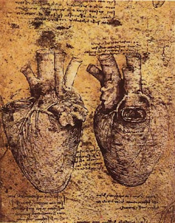 Drawings by Leonardo da Vinci