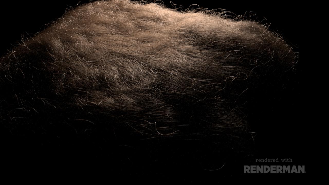 Paul Sheehy: XGen Fur RnD in Maya and Renderman with