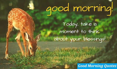 good-morning-quotes-hd-wallpapers-images