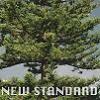 페퍼톤스 - New Standard