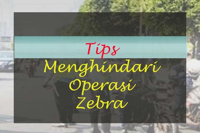 tips-menghindari-opersi-zebra