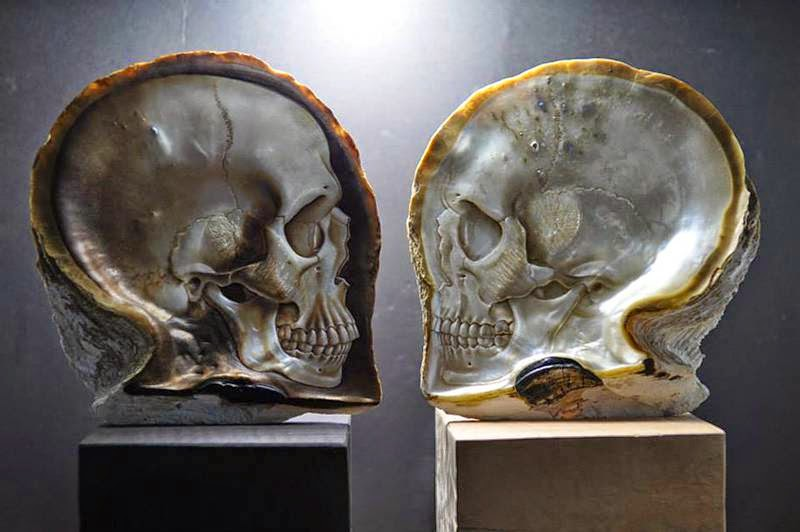 Skull Shells by Gregory Raymond Halili