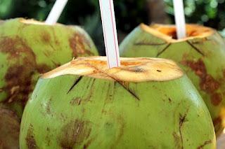 kelapa hijau bagi kesehatan