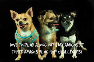 Three Amigos Blog Hop Challenge