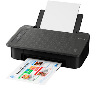 Make copies of sights inwards a surge using the Smartphone Take too Duplicate offering amongst the  Canon PIXMA TS308 Drivers Download And Review