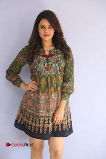 Actress Shruti Sodhi Pictures at Meelo Evaru Koteeswarudu Trailer Launch  0020.JPG