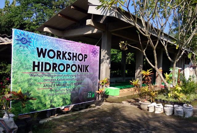 Workshop hidroponik oleh Majelis Ekonomi & Kewirausahaan