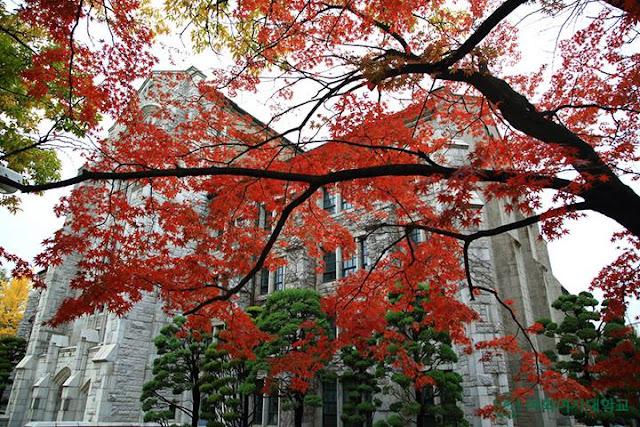 Trường đại học nữ Ewha Hàn Quốc