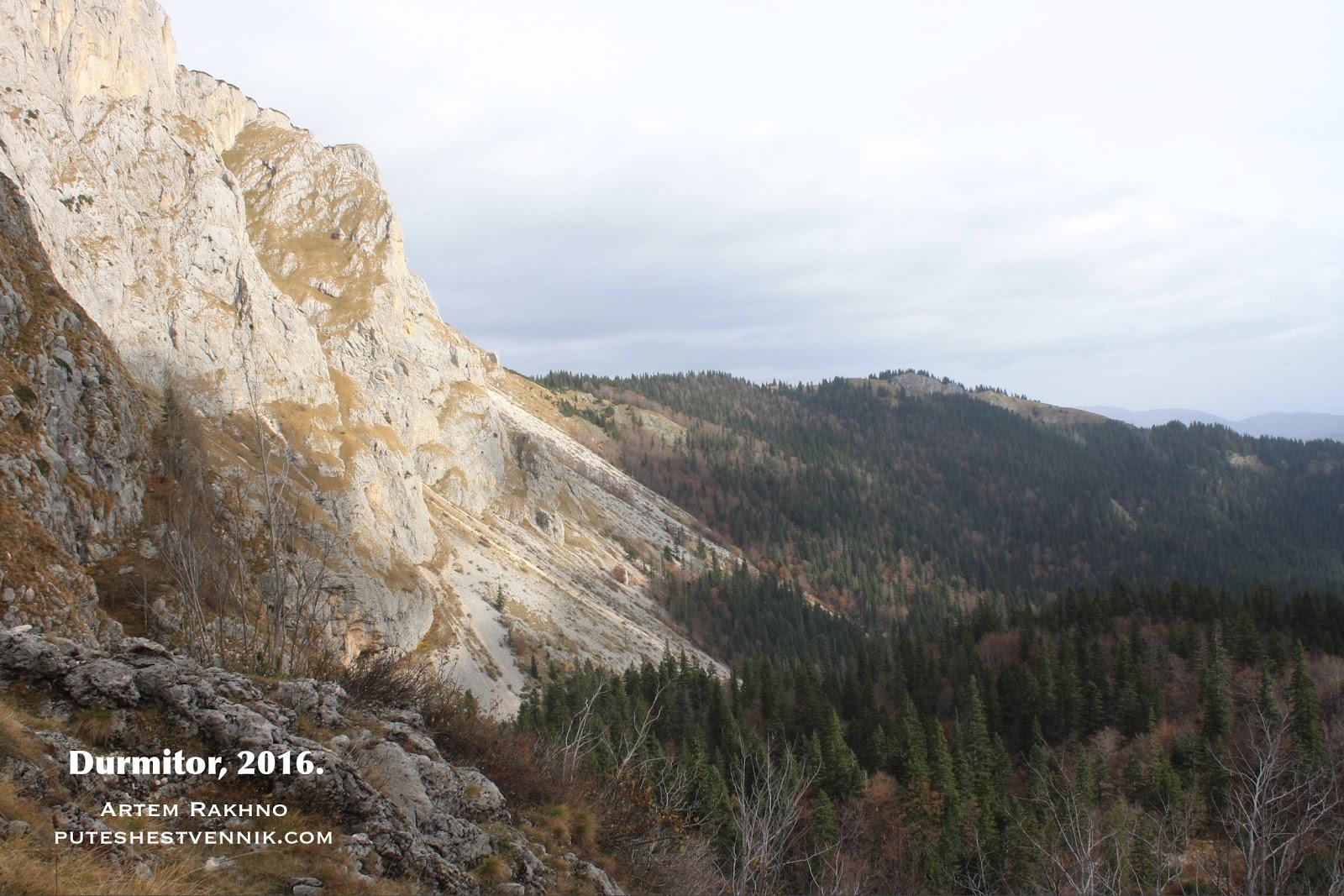 Гора и лесной массив в Черногории
