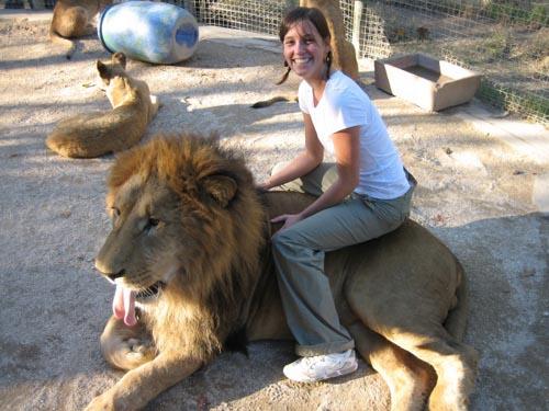 Kebun Binatang Paling Bahaya Pengunjung Bisa Begini