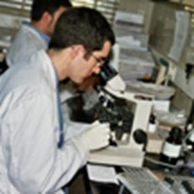 Plan Regional de Investigación Científica e Innovación Tecnológica PRICIT