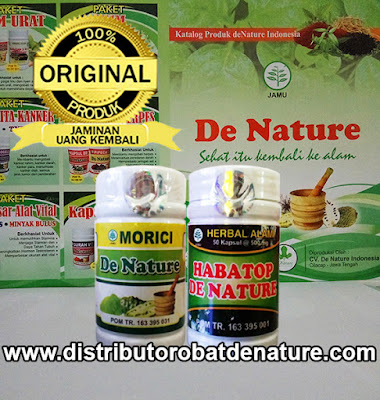 Paket Obat Kolesterol Herbal