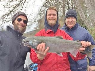 Rogue-river-Coho-salmon