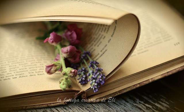 amo-leggere