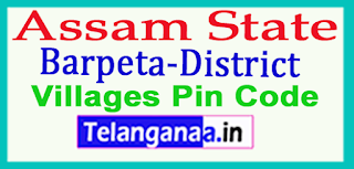 Barpeta District Pin Codes in Assam State
