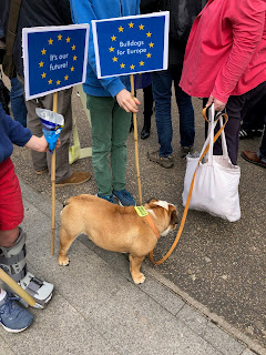A family and their dog protest against Brexit on the People's March