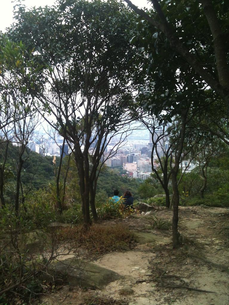 上山稜線之後這裡可以眺望大直、美麗華一帶的風景。