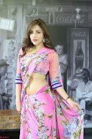 Actress Angela Krislinzki in Pink Saree Blouse Exclusive Pics March 2017 ~  071.JPG