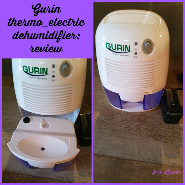 Gurin dehumidifier review
