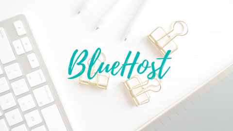 My Disaster with Bluehost