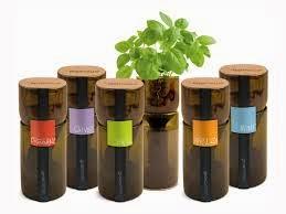 Kreatif - Membuat Pot Hidroponik dari Botol Plastik Bekas