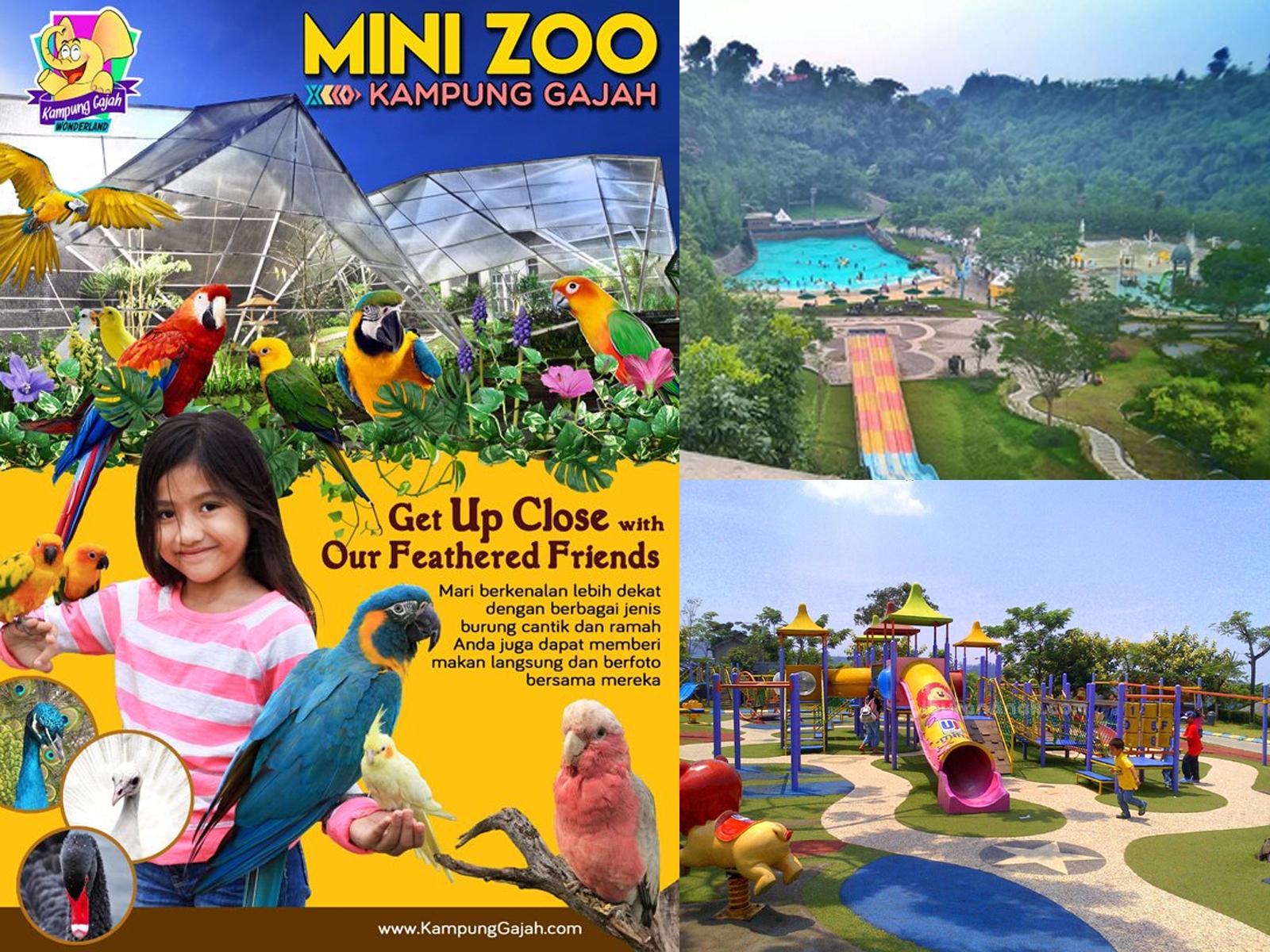 Kebun Binatang Mini Kampung Gajah Wonderland