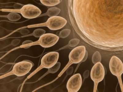 Resultado de imagem para Tratamento para engravidar gratuito