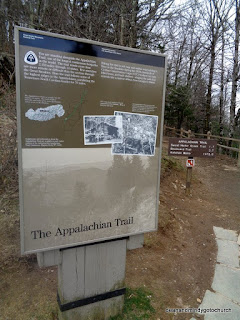 Appalachian trail at Great Smoky Mountains National Park