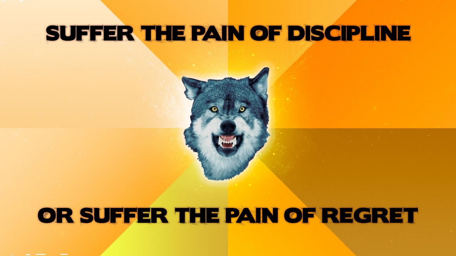 Suffer the pain of discipline, or suffer the pain of regret