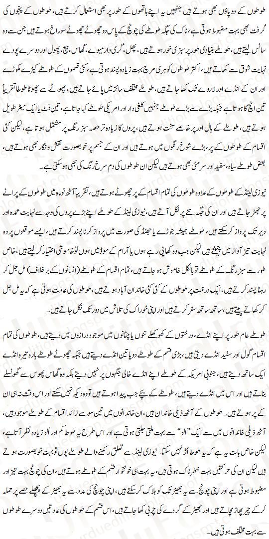 parrot essay in urdu parrot urdu essay mazmoon urdu speech notes  parrot essay in urdu parrot