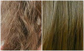 طرق علاج الشعر الهايش بالوصفات الطبيعيه
