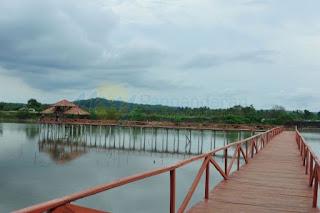 jembatan mangrove di pangandaran