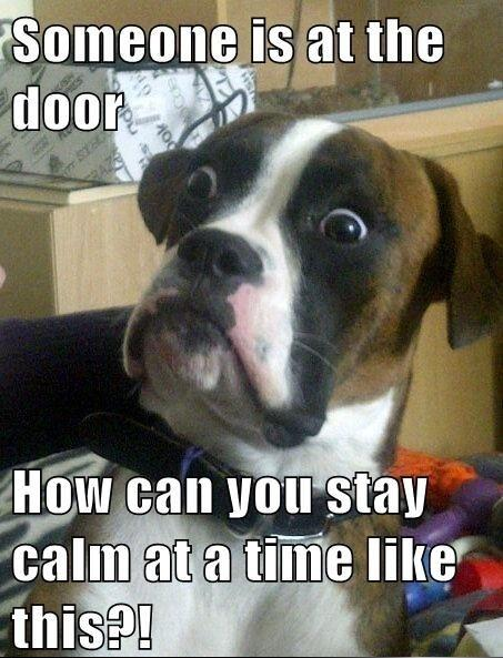 Someone is at the door.  How can you stay calm at a time like this?