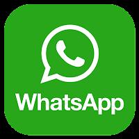 http://api.whatsapp.com/send?1=pt_BR&phone=5594981160349