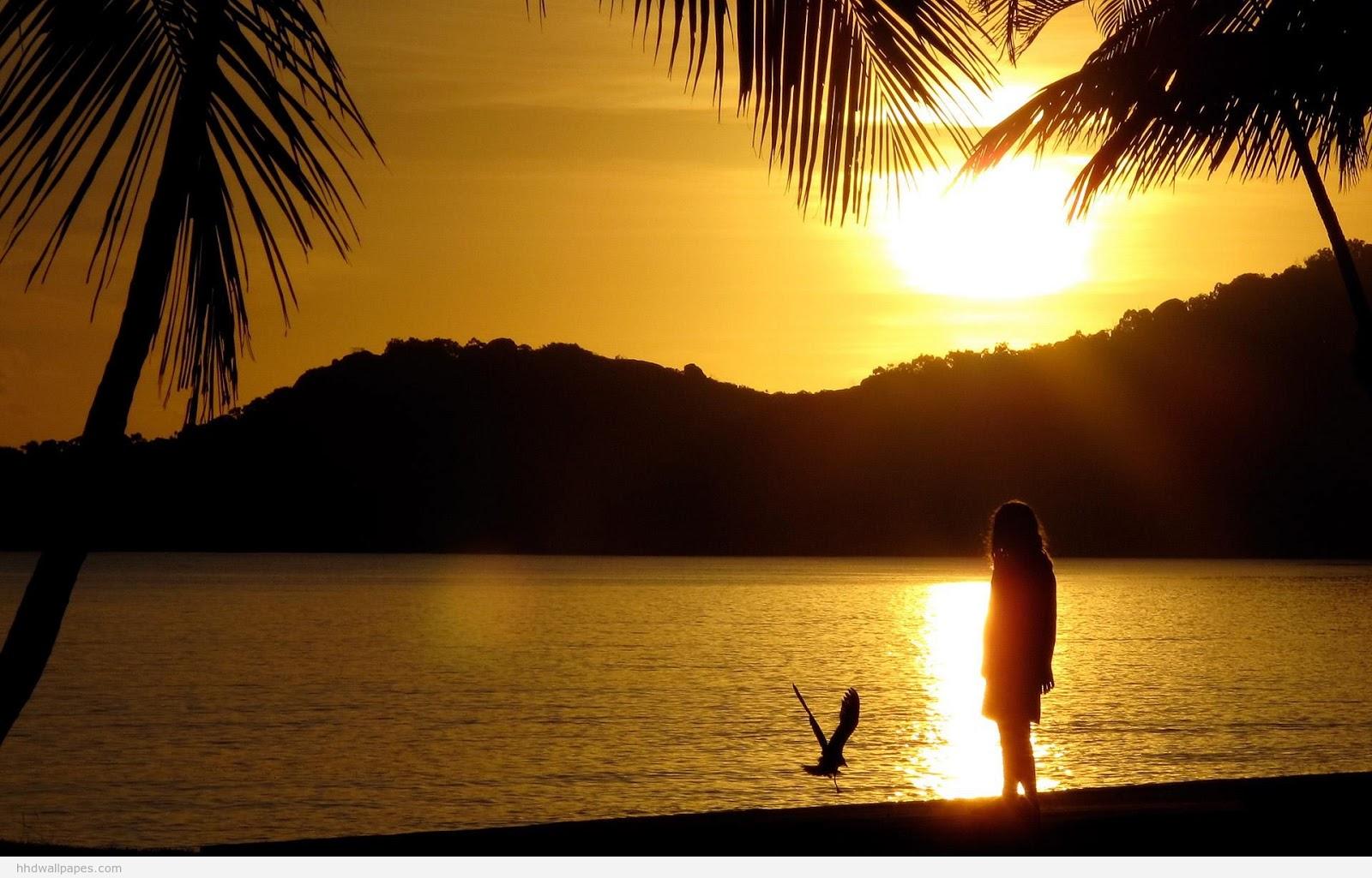 A Sunset Scene Image