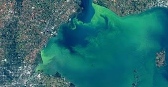 Hồ lớn ở Bắc Mỹ chuyển màu xanh kỳ dị, nguyên nhân do đâu