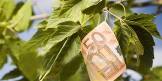 O Κουτρουμάνης στον Real fm: Αύξηση εισφορών 30% από 1η Ιανουαρίου για αγρότες - μελισσοκόμους