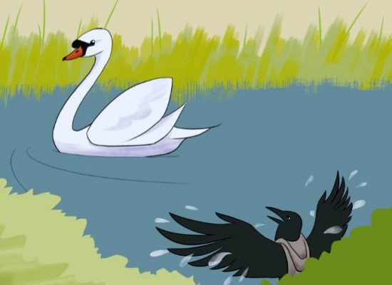 The Crow and The Swan Story ~ Short Stories For Children
