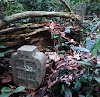 Makam Ulama Yang Hidup Masa Sultan Al-Malik Ash-Shalih Ditemukan