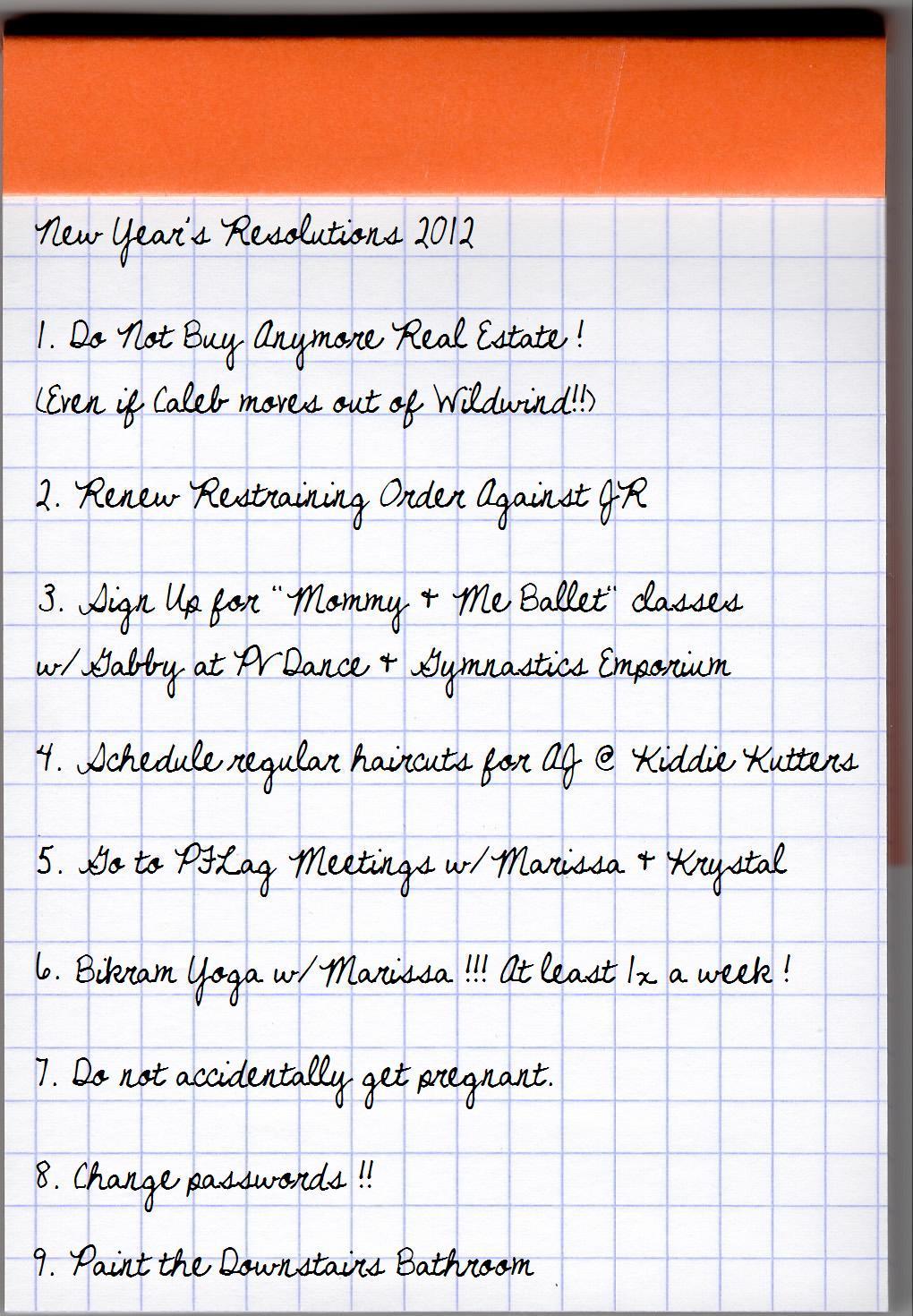 Pratt Falls: Biancapalooza Countdown * New Year's Resolutions?