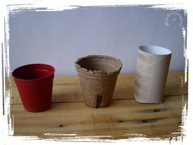 anleitung pflanzt pfchen aus papprollen basteln paper pots 1 misszuckerguss. Black Bedroom Furniture Sets. Home Design Ideas
