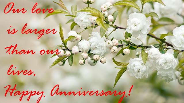 Wedding Anniversary Wishes to a couple., including anniversary quotes, sayings, anniversary wishes with images HD ,  Download Beautiful  HD Happy Marriage Anniversary Images