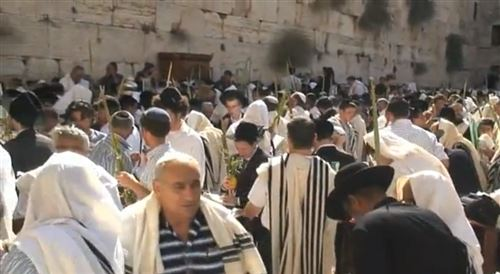 Best Sukkot In Jerusalem