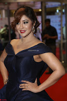 Payal Ghosh aka Harika in Dark Blue Deep Neck Sleeveless Gown at 64th Jio Filmfare Awards South 2017 ~  Exclusive 136.JPG