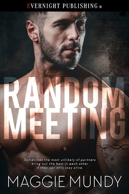 Front Cover, Random Meeting, by Maggie Mundy