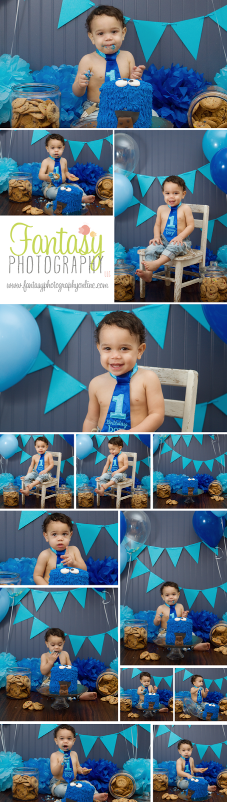 cake smash photographers in winston salem nc | greensboro high point kernersville