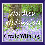http://www.create-with-joy.com/2017/06/wordless-wednesday-behold-my-world.html